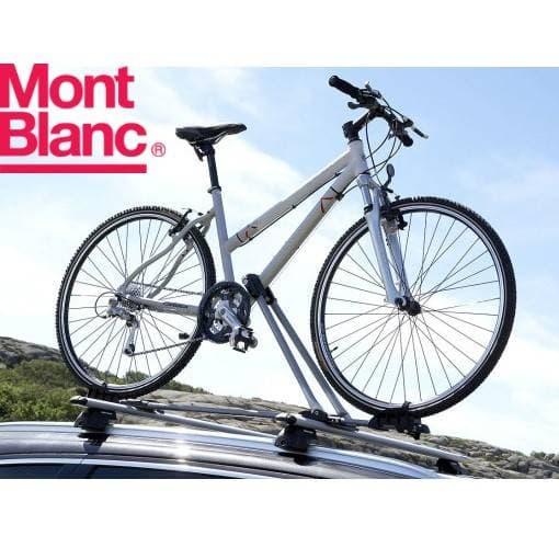 ��������� ���������� Mont Blanc Scott � MB728540